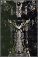 simetria duero 2013 (1)